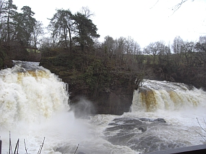 Bonnington Linn